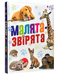 Книга Малята-звірята. (Апріорі)