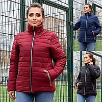 Р 48-62 Демисезонная стеганная куртка без капюшона Батал 23623