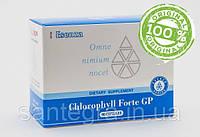 Chlorophyll Forte GP (90) Хлорофилл Форте / Хлорофиллин: аллергия, хлорофилл,таблетки от аллергии, фото 1