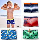 Плавки и шорты детские