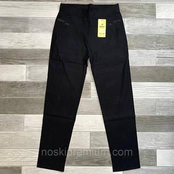 KENALIN брюки 509-1 (2XL-3XL, 3XL-4XL, 4XL-5XL, 5XL-6XL)