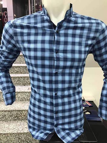 Чоловіча молодіжна сорочка  Paul Jack стійка, фото 2