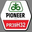 Гибрид кукурузы ПР39Н32