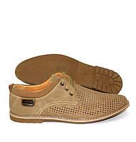 Бежевые мужские туфли с перфорацией  на шнуровке
