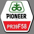 Гибрид кукурузы ПР39Ф58