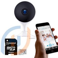 Внутренняя система видеонаблюдения на 1 камеру (ІР, 2МП)
