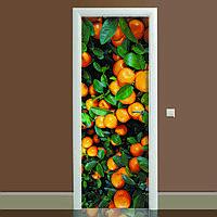 Наклейка на дверь Цитрус 01 650х2000мм виниловая 3Д наклейка декор самоклеящаяся