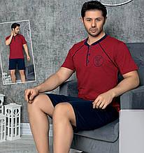 Піжама чоловіча бавовняна з шортами Seyko костюм для будинку 9021