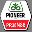 Гибрид кукурузы ПР38Н86