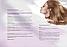 Ботекс для волос Джихеир Идеальный Блонд, GHAIR B-tox Perfect Blond, фото 3