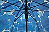 Прозорий парасолю з кленовим листям, фото 3