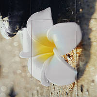 Панно на керамической фотоплитке - Белый цветок и Черные камни 4