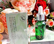 Сироватка для обличчя з екстрактом зеленого чаю зволожуюча Rorec Green Tea Water Essence (15мл)