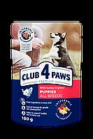 Клуб 4 Лапи (Club 4 Paws) Premium пауч індичка в соусі для цуценят усіх порід 0.1КГ х 24шт.
