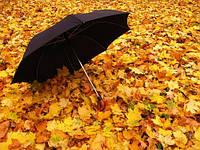 Мужские зонты полуавтомат