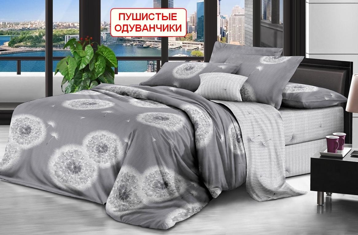 Двоспальний комплект з простирадлом на резинці - Пухнасті одуванчики