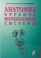 Гайворонский И.В., Ничипорук Г.И. Анатомия органов мочеполовой системы 10-е издание 2020 год, фото 1