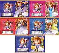 Набор тетрадей ученических 12 листов ТЕТРАДА DISNEY Принцесса София линия картонная обложка 5 дизайнов 25