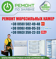Ремонт морозильников Черновцы. Ремонт морозильных камер, ларей в Черновцах. Ремонт ларей по Черновцам
