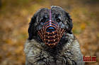 Намордник-сітка KARELINE з натуральної шкіри для мастино, кавказької вівчарки, фото 5