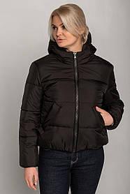 Демисезонная черная куртка из плащевки с капюшоном и утеплителем цвет черный, размер 42, 44, 46, 48, 50