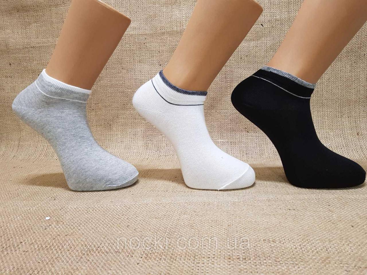 Чоловічі шкарпетки короткі з бавовни Paul Mark ф17 40-45 асорті гладкі з смужечкою