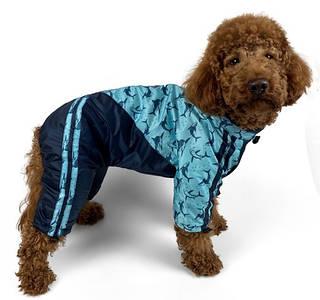 Дощовики для собак