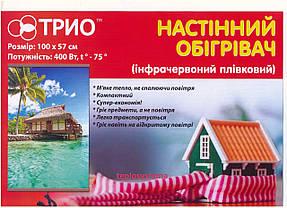 Инфракрасный настенный пленочный обогреватель (картина) КАМИН 3D, Трио Украина, фото 3