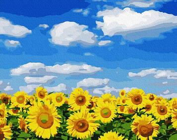 Картины по номерам 40х50 см Brushme Поле подсолнухов (GX 32422)