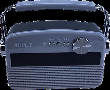 Портативна колонка OKCY-A11 (Сірий)