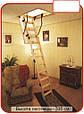 Чердачная лестница (с люком) деревянная, фото 2