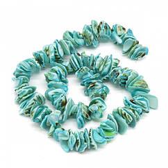 Бусины из Морскоих Ракушек, Самородок, Цвет: Голубой, Размер: 10~20x8~12x3~6мм, Отверстие 1мм, около
