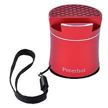 Портативная Bluetooth-колонка Peterhot PTH-307, радио, speakerphone, Shaking, фото 3