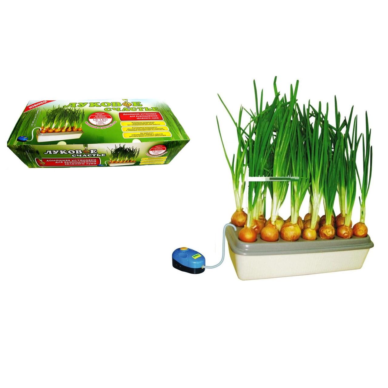 Аппарат прибор для выращивания зеленого лука гидропоника для дома «Луковое счастье»