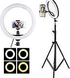 Набор для блогера 3в1. Кольцевая лампа 30см + ПУЛЬТ + ШТАТИВ 2 метра, фото 2