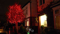 Нить 10м Красная Светодиодная, 100 LED, уличная гирлянда на черном каучуковом проводе