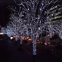Нить 5м Белая (Холодный) Светодиодная, 50 LED, уличная гирлянда на черном каучуковом проводе