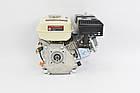 Двигатель бензиновый Iron Angel FAVORITE 212-T/20, фото 4