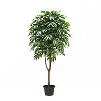Дерево Манго Искусственное 160см