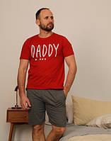Мужской летний костюм с шортами и футболка хлопок M, L, XL, 2ХЛ Турция