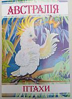 Раскраска А4 (4листа) Птицы Австралии