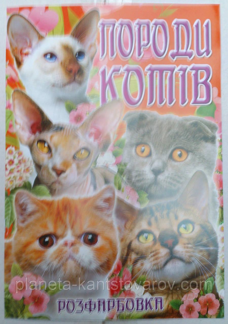 Раскраска А4 (4листа) Коты