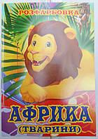 Раскраска А4 (4листа) Животные  Африки