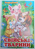 Раскраска А4 (4листа) Домашние животные