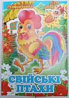 Раскраска А4 (4листа) Домашние птицы