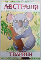 Раскраска А4 (4листа) Австралия