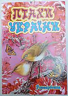 Раскраска А4 (4листа) Птицы Украины