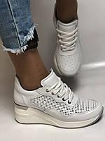 Evromoda. Женские кеды-кроссовки белые на платформе.Натуральная кожа.Турция. Размеры  40, фото 3
