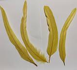 Перья петуха. Декоративное перо Желтое 22-30см, фото 8