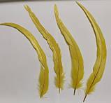 Перья петуха. Декоративное перо Желтое 22-30см, фото 9